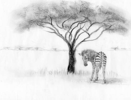 The Zesty Zebra via waldorfbooks.com