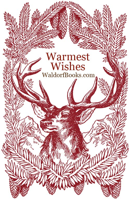 First Annual Holiday Sale 2014 via waldorfbooks.com